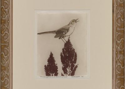 Mockingbird and Sumac