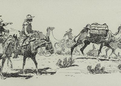 US Army Camels in Arizona